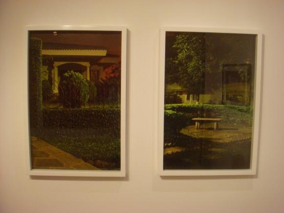 Juan David Velasquez - ¿A Donde LLevan los Jardines en la Noche? (2010-2011)