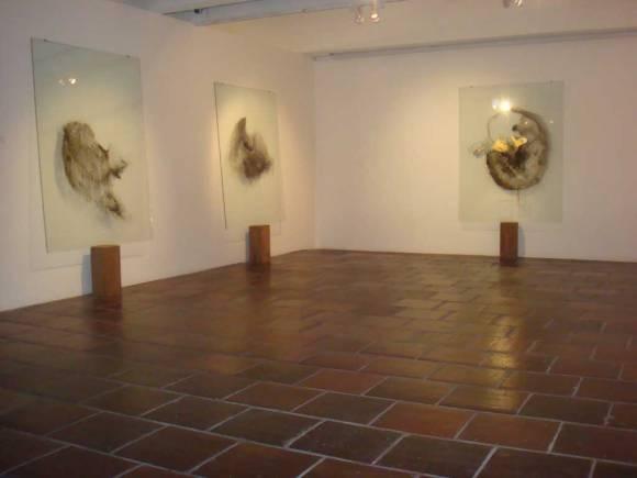 Herlyng Ferla — Despreciadores del Cuerpo (2011-2012)