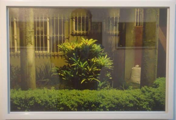 Juan David Velásquez — ¿A Donde Llevan los Jardines en la Noche? (2010-2011)