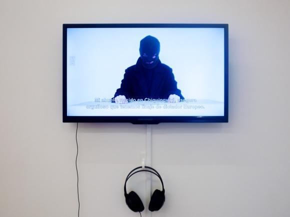 Maria Mercedes Salgado | La revolución está de moda (2010)